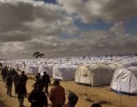 Erdogan propõe construção de cidade para refugiados no norte da Síria