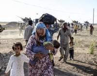 Anistia Internacional acusa Turquia de expulsar refugiados à Síria