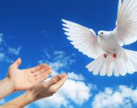 CCBT organiza Concurso de Artigos: Heróis da Paz