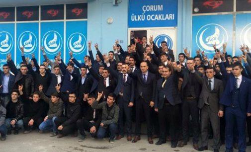 Lobos Cinzentos: ultranacionalistas turcos