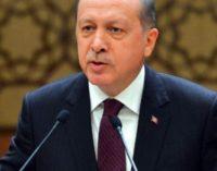 Erdogan quer referendo sobre acordo Turquia-UE