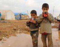 Imigrantes chegados pela Turquia podem ser repatriados