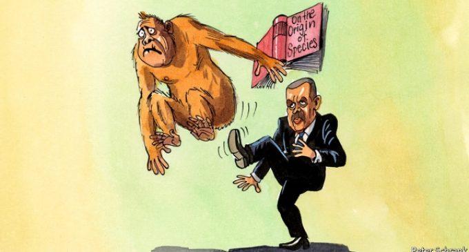 O declínio das escolas turcas
