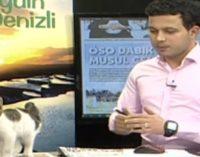 Gatinho rouba a cena em programa ao vivo na Turquia