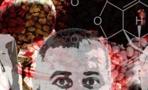 Turquia pode estar se transformando em um estado mafioso