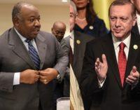 Erdogan elogia remoções à força no Gabão, promete novas operações