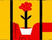 Estou assistindo a crise do coronavírus de uma prisão turca. É por isso que tenho esperança.