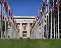 ONU pede à Turquia que pare com o uso indevido da legislação antiterrorismo para deter os defensores dos Direitos Humanos