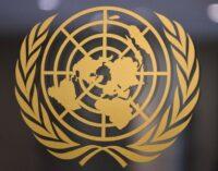 ONU apela à Turquia para estabelecer prontamente o paradeiro do educador desaparecido