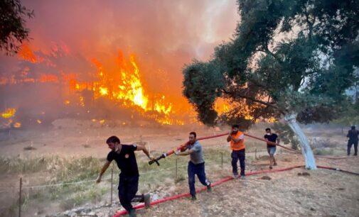 [Opinião] Controvérsias e críticas crescem conforme incêndios florestais devastam a Turquia