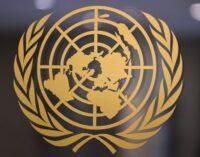 Grupo de Trabalho da ONU exorta o governo turco a acabar com os desaparecimentos forçados